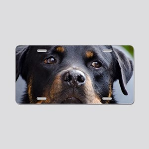 Rottweiler Dog Aluminum License Plate