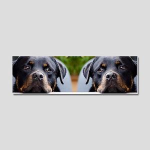 Rottweiler dog Car Magnet 10 x 3