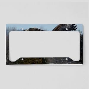 9x12_print 3 License Plate Holder