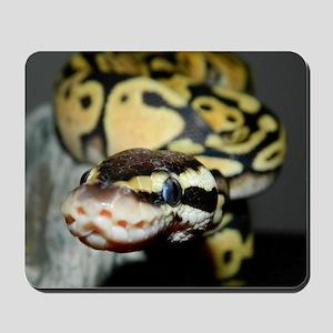 MaLunas Design Mousepad
