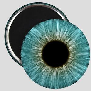 Weird Eye Magnet