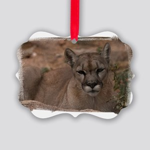 (16) Mountain Lion 1 Picture Ornament