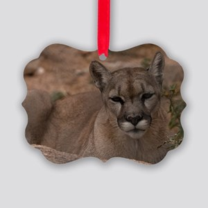(11) Mountain Lion 1 Picture Ornament
