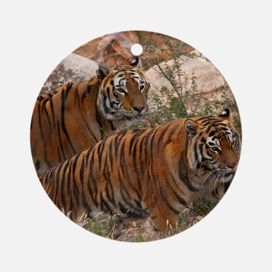 (4) Tigers Two Walking Round Ornament
