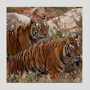 (4) Tigers Two Walking Tile Coaster