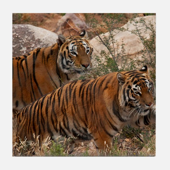 (4) Tigers Two Walking Tile Coaster