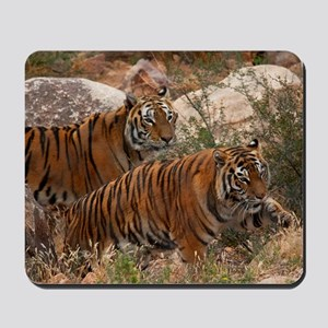 (4) Tigers Two Walking Mousepad