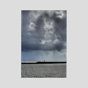 4.5X5.75-Birds-Seagull-Against-St Rectangle Magnet