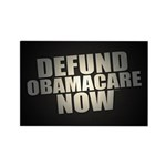 Defund Obamacare Now Magnets