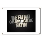 Defund Obamacare Now Banner