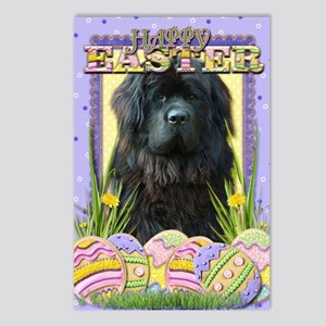 EasterEggCookiesNewfoundl Postcards (Package of 8)