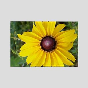 flower-horz-12 Rectangle Magnet