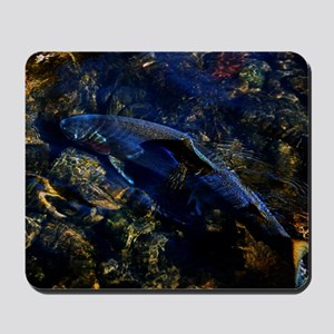 STEELHEADCafePressInWater Mousepad