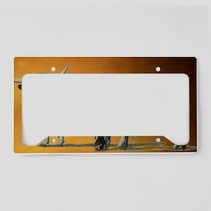 blankback1 License Plate Holder