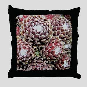 IMGP5787-stylized-tile Throw Pillow