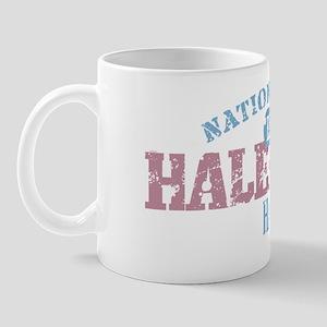 Haleakala 3 Mug