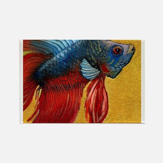 Beautiful Betta Fish Rectangle Magnet