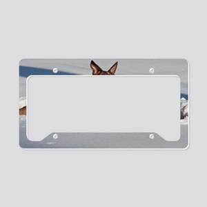 Snow Dogs License Plate Holder
