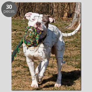 Pit Bull 5 Puzzle