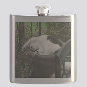 Cat sleeping in a flowerpot Flask