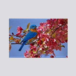 Bluebird in Blossoms Rectangle Magnet