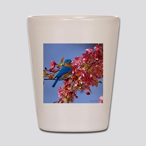 Bluebird in Blossoms Shot Glass