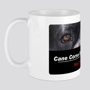 security Mug