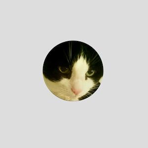 CAT 341 Mini Button