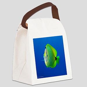 showercurtain01 Canvas Lunch Bag