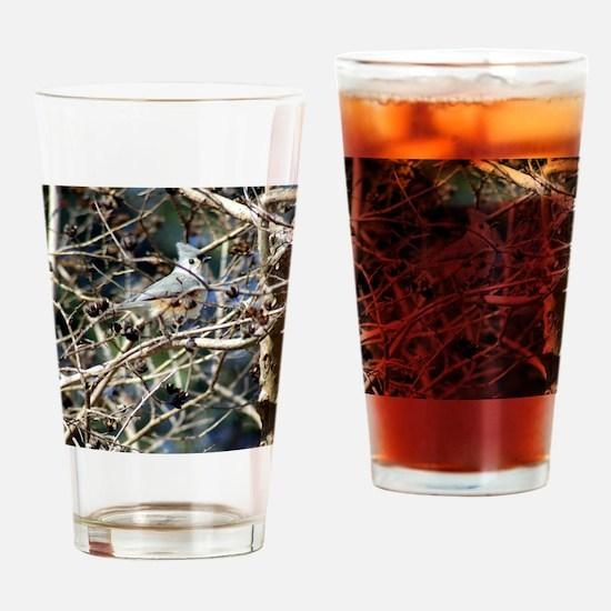 TuftedTitmouseiPad1 Drinking Glass