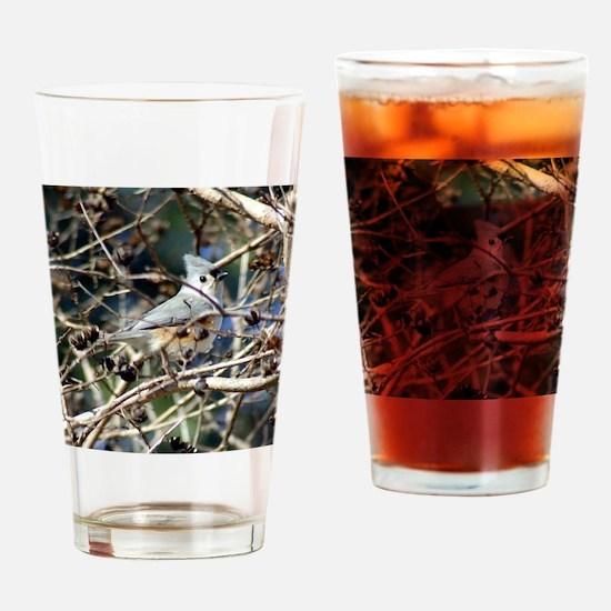 TuftedTitmouseNoteCard Drinking Glass