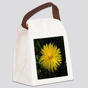 dandelion1 Canvas Lunch Bag