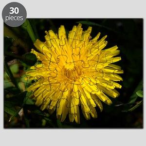 dandelion1 Puzzle