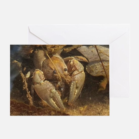 crayfish Greeting Card