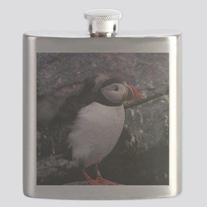 puffin scratching head Flask