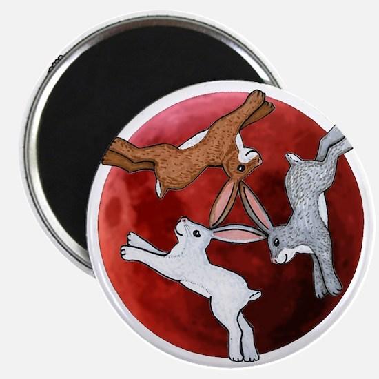 three hares Magnet