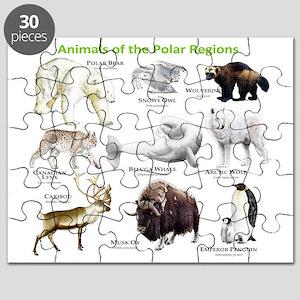 Animals of the Polar Regions Puzzle