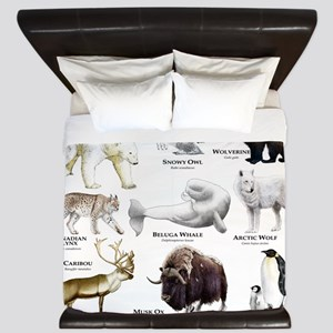 Animals of the Polar Regions King Duvet