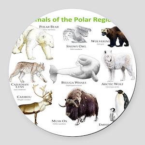 Animals of the Polar Regions Round Car Magnet