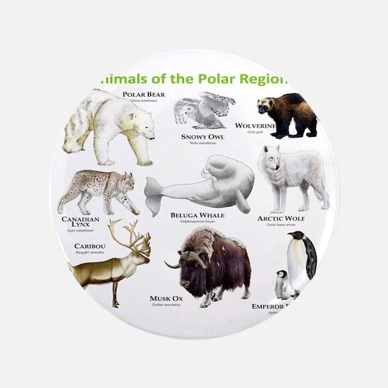 "Animals of the Polar Regions 3.5"" Button"