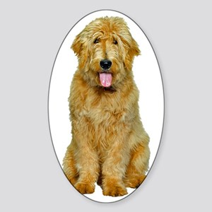 Goldendoodle Sticker (Oval)