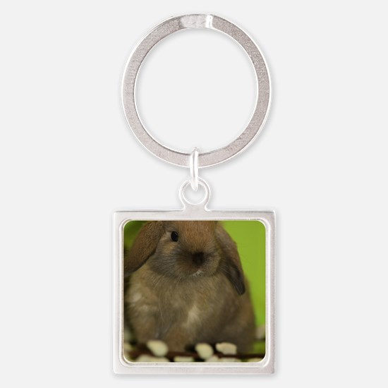 bunny_9 Square Keychain