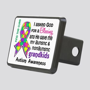 D Blessing 4 Autism Grandk Rectangular Hitch Cover
