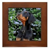 Doberman Framed Tiles