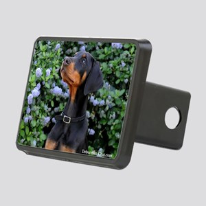 Baily for blanket Rectangular Hitch Cover