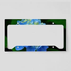 hydrangea License Plate Holder