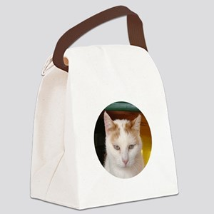 ornamentmasred Canvas Lunch Bag