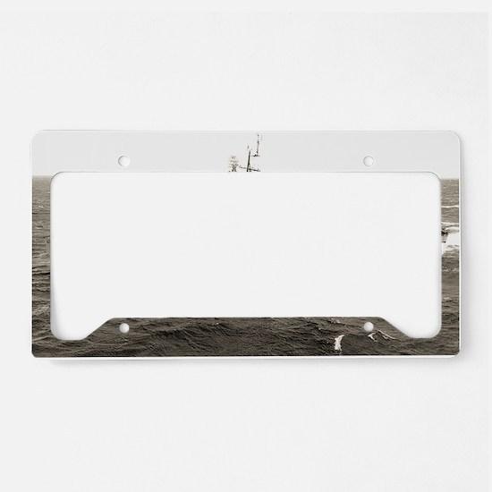 taussig large framed print License Plate Holder