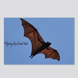 Flying fox fruit bat