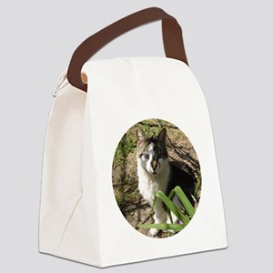 repic6 Canvas Lunch Bag